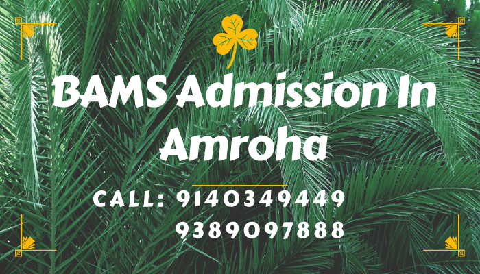 bams admission in amroha