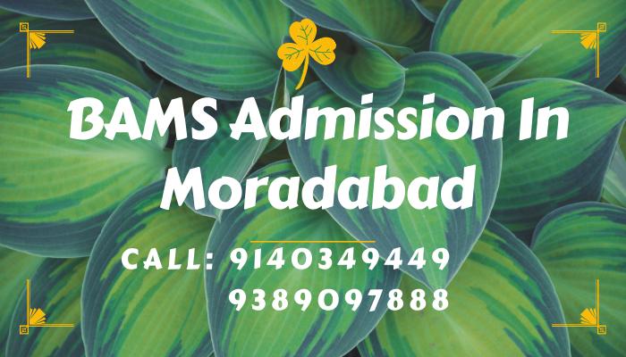 bams admission in moradabad